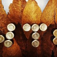Самый дорогой табак WTO (World Tobacco Original)