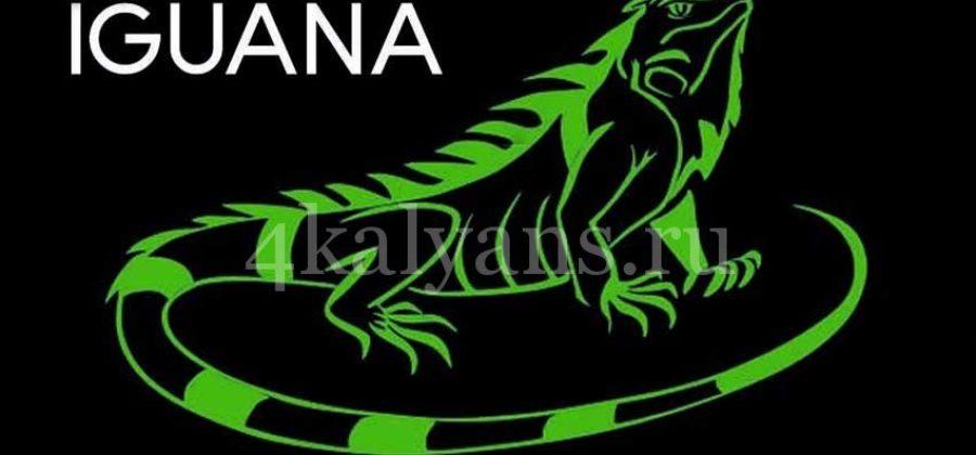Табак Iguana (Игуана)
